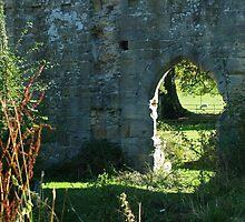 Jervaulx Abbey 3 by WatscapePhoto