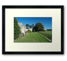 Jervaulx Abbey 4 Framed Print
