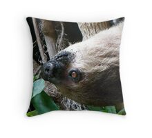 Sloth Portrait Throw Pillow