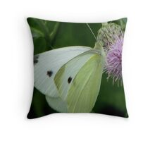 Cabbage White Butterfly Throw Pillow