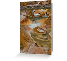 Mineral Waters Greeting Card