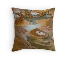 Mineral Waters Throw Pillow