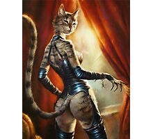 The Hermitage cats' Mistress Photographic Print