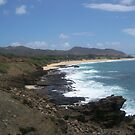 HAWAIIAN VIEW-Shades of Blue by paintbrush