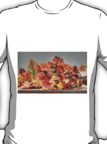Fall Season Colors T-Shirt
