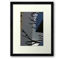 Bare Hunt Framed Print