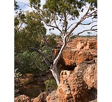 Skull Hole, Bladensburg NP by Blue Gum Pictures Photographic Print