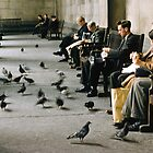 1957 Feeding pigeons British Museum by Fred Mitchell