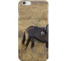 African gemsbok, Etosha National Park, Namibia iPhone Case/Skin