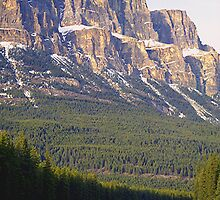 Castle Mountain & The Bow River by Stephen Thomas