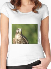 New Zealand Falcon Women's Fitted Scoop T-Shirt