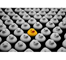 Yellow Ducky Photographic Print