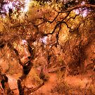 Composition With Gnarled Trees and Tangled Branches in Sepia With Accents of Other Colors by Ivana Redwine