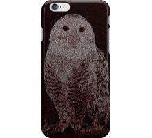 Owl in the Dark iPhone Case/Skin
