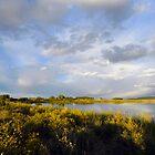 La Veta Town Lake by Fletcher Hill