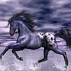 Blue Roan Appaloosa by Walter Colvin