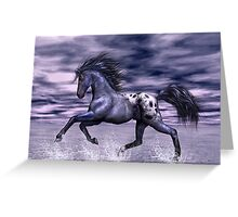 Blue Roan Appaloosa Greeting Card