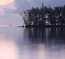 Pastel Evening by Varinia   - Globalphotos