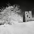Threave Castle by Mark Jones