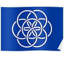 The International Flag of Planet Earth Poster