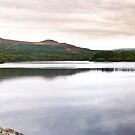 Burrator Reservoir Dartmoor National Park by David Wilkins