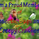 Insects Bugs and Creepy Crawlies Banner by bygeorge