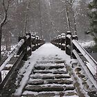 Snow-Covered Bridge in Yosemite by richx99