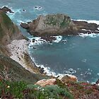 Big Sur by richx99