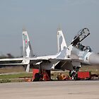 su-30MK ready for flight by sergeylukianov