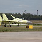 Su-30MK just landed by sergeylukianov