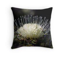 Elegant Crown Throw Pillow