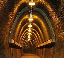 Fernleigh Tunnel - Newcastle NSW by Bev Woodman