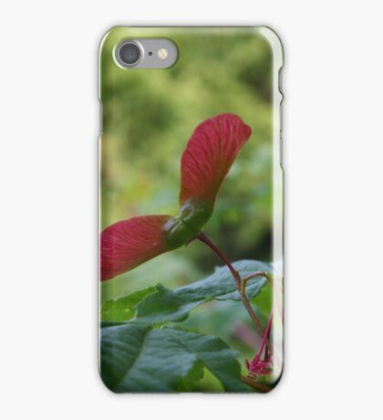 Maple Seeds iPhone Case/Skin