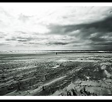 Lonely by Peter Hitchener
