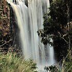Trentham Falls by Stephen Ruane