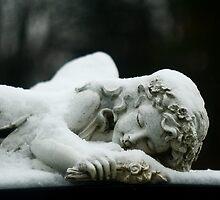 Sleeping Angel by dbjorklund