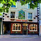 Three Cranes Pub - York by Trevor Kersley