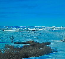 Winter Morning in Crow Country by Bryan D. Spellman