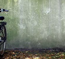 lonely bicycle by 2numundo