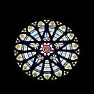 The Rose Window by Mike Oxley
