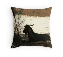 A sad figure of a silouhetted and tethered goat Throw Pillow