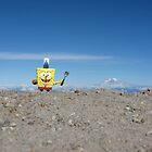Spongebob Summits Mt. St. Helens by Dan Jesperson
