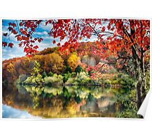 Colorful Trees  Reflections in a Lake Poster