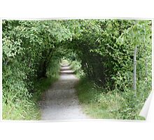 Tunnel of Leafy Green Poster