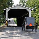Amish Passage by Monte Morton