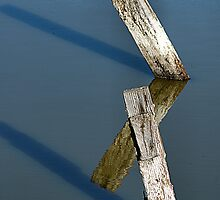 Old Fence Posts by Bob Wall