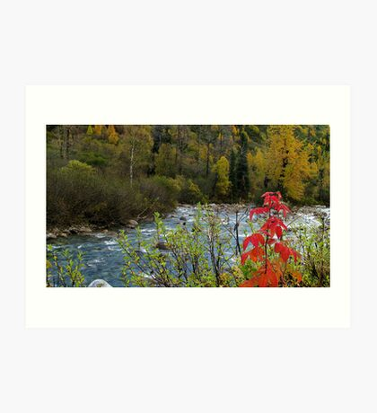 LITTLE SUSITNA RIVER - ALASKA Art Print