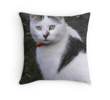 Mr Kipling Throw Pillow