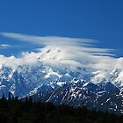 Attitudes of the Mountain ~Mount McKinley/Denali ~ ALASKA by Barbara Burkhardt