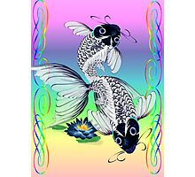 White Koi-Blue Lily  Photographic Print